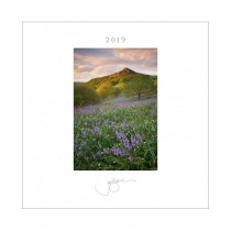 Joe Cornish Desk & Wall Calendar 2019